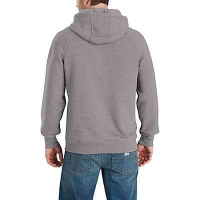 Carhartt Men's Asphalt Heather/Gray Force® Delmont Graphic Hooded Sweatshirt - back