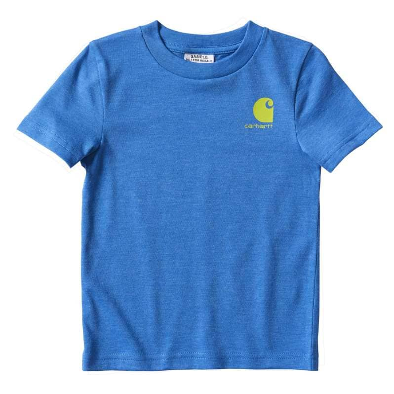 Carhartt  Palace Blue Outfish Them All Heather Graphic T-Shirt