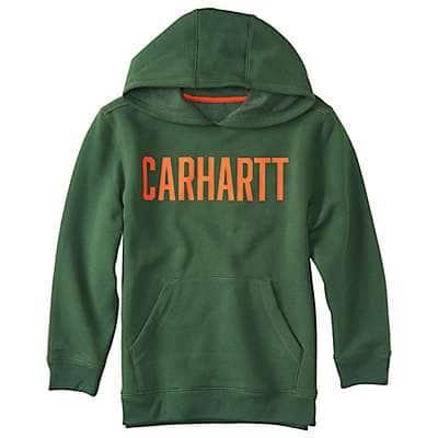 Carhartt Boys' Greener Pastures Carhartt Block Sweatshirt - front