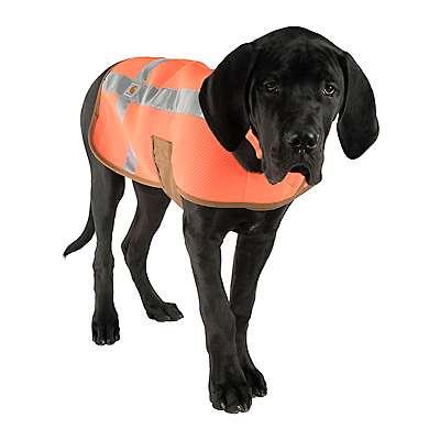 Carhartt  Hunter Orange Safety Vest - back